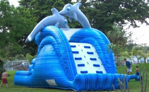 dolphin spash water slide rental