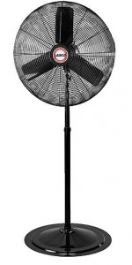 Pedestal Fan Rental