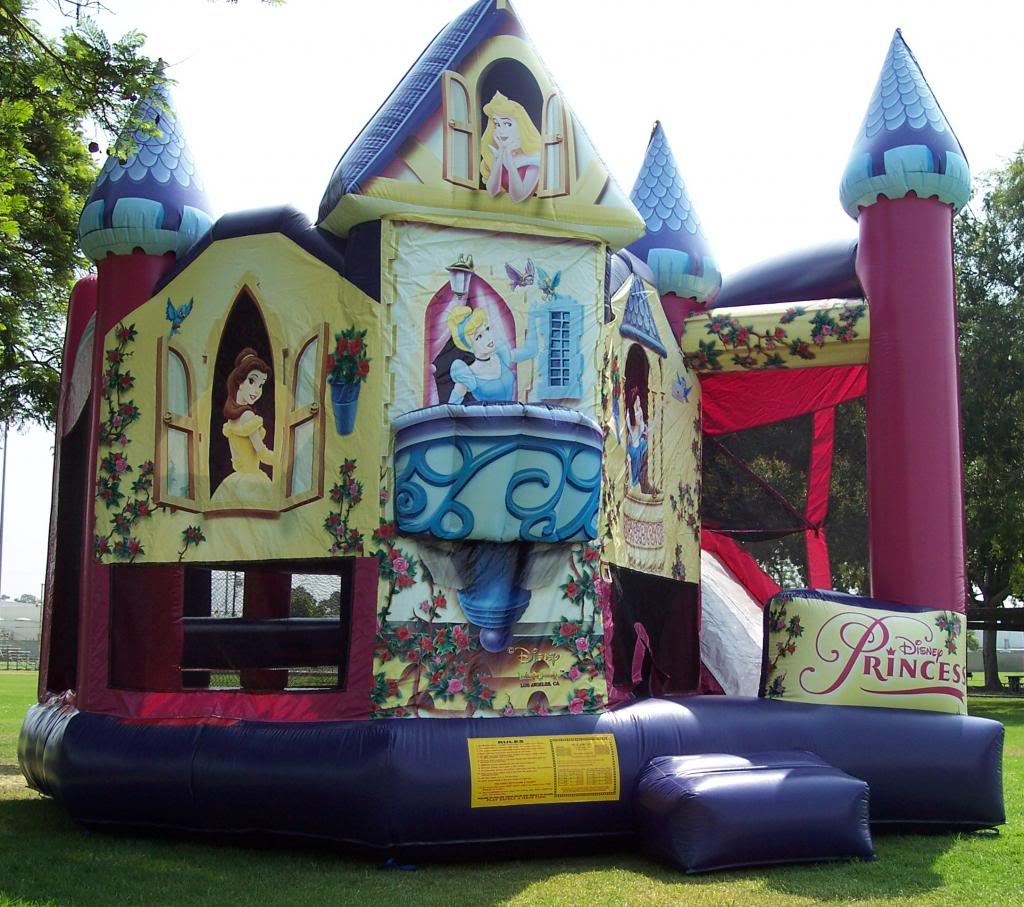 prncess combo bounce house