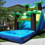 Tropical Water slide Rental (with pool)