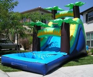Tropical Water slide Rental (with pool)