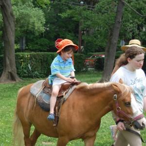 pony rdes in miami